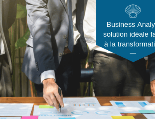 Le Business Analyst la solution idéale face à la transformation